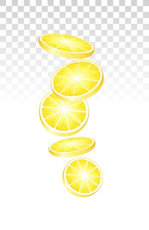 Fresh Juicy Lemon Slices Falling Down On Transparent Background. Vector Photo Realistic 3d Illustration. Perspective View