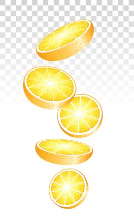 Fresh Juicy Orange Slices Falling Down On Transparent Background. Vector Photo Realistic 3d Illustration. Perspective View