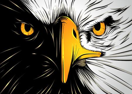 Powerful Eagle Face Stock Illustratie