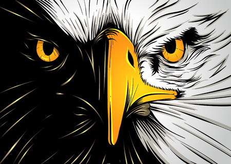 Powerful Eagle Face Stock Illustratie