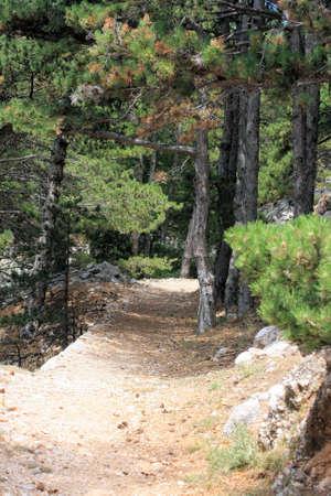 krk: walking uphill in Baska on the island KRK