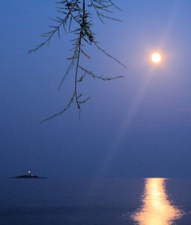 moon reflecting in the sea photo