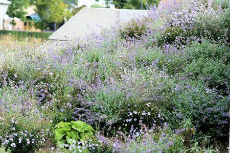 floriade: Floriade Venlo 2012 Stock Photo