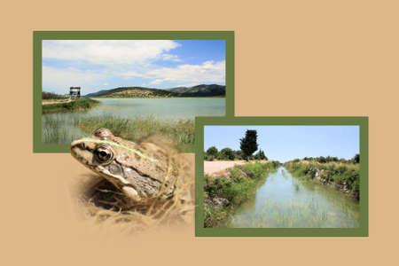 walking path: Design for postcard, Vransko Jezero, Croatia