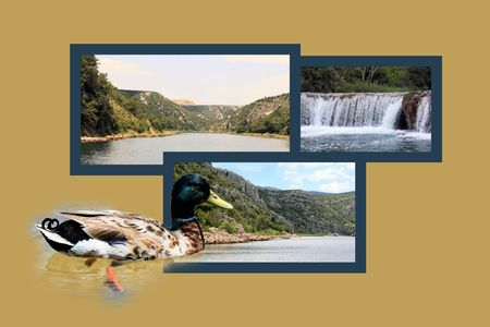 Design For Postcard Zrmanja River Inland