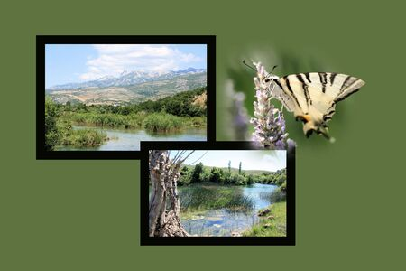 region: Design for postcard, Zrmanja, region Muscovic