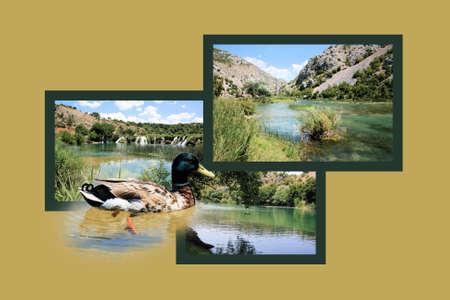combi: Design for postcard, Zrmanja, region Muscovic