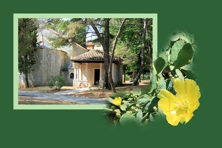 national park: Design for postcard, national park Brioni, Croatia