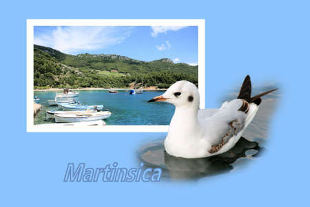 Design for postcard, Martinsica, Croatia, with text photo