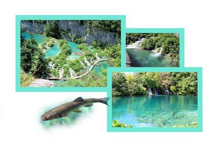 combi: Design for postcard, n.p. Plitvice, Croatia