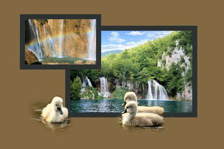 np: Design for postcard, n.p. Plitvice, Croatia