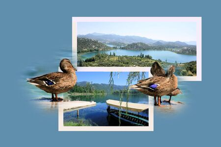 combi: Design for postcard, Lake Bacinska, Croatia