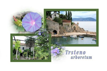 Design for postcard, Trsteno, Croatia, with text