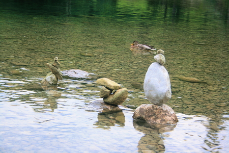 karawanks: ducks on Lake Bohinj Stock Photo
