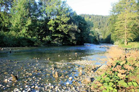 Sava river, near lake Bohinj, Slovenia
