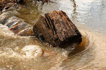 streamlet: trunk in a streamlet