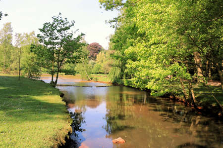 streamlet: Mikerf park, Brasschaat, Belgium Stock Photo