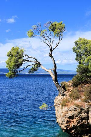 View in Brela, Croatia Stok Fotoğraf