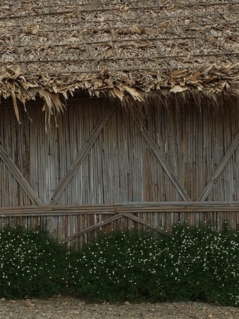 cottages: Bamboo cottages