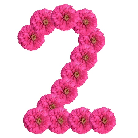 Flowers arranged into the shape of the number 2 on a pure white background.  photo
