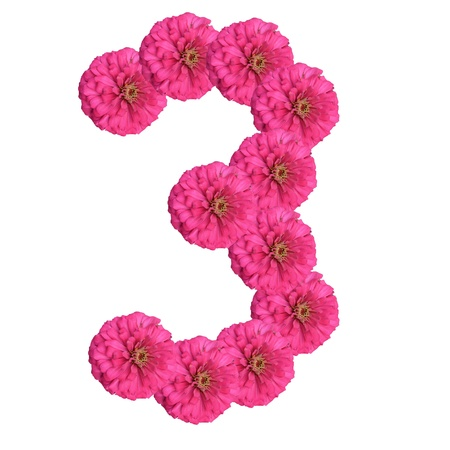 Flowers arranged into the shape of the number 3 on a pure white background.  photo