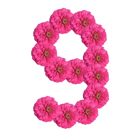 Flowers arranged into the shape of the number 9 on a pure white background.