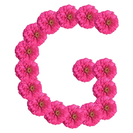 single word: Letters made of flowers and isolated on white, G