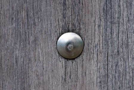 stainless nut on wood wall Stock Photo - 11051063