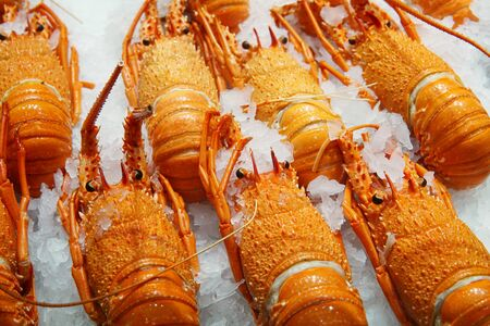 Selective focus on Cooked western australia rock lobsters display at fish market. Background of whole lobster ready to takeaways Reklamní fotografie - 93514382