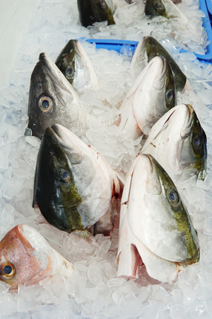Close up of fish head on ice ready for sell at fish market. Raw fish head ingredient for stock and grill.
