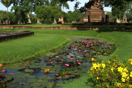 Red lotus and architecture at Wat Sha Na Song Kram in Sukhothai Historical park, Thailand  photo