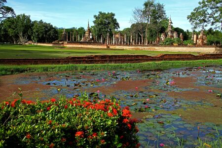 Red flower spike in basin front Wat Phra  Mahathat in Sukhothai Historical park, Thailand  photo