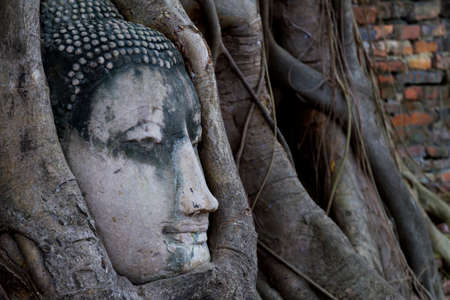 Old statue buddha head sleep in the tree roots , Ayutthaya,Thailand   photo