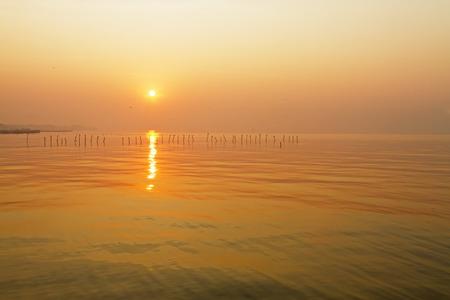 pu: Beautiful sunrise with seagull at Bang Pu Seaside of Thailand