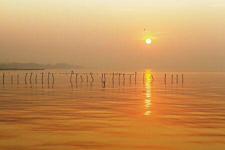 pu: Morning sunrise with seagull at Bang Pu Seaside of Thailand Stock Photo