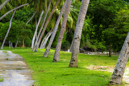 The beach Bang Boet and green nature at Chumphon Province Thailand is famous for travel