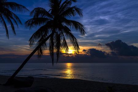 Sunrise with coconut at the beach Ban Krut Beach, in Prachap Kirikhun Province Thailand is famous for travel 版權商用圖片