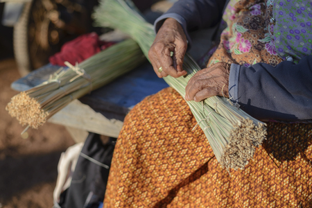 Grandma is preparing Sedge for woven mat in the morning