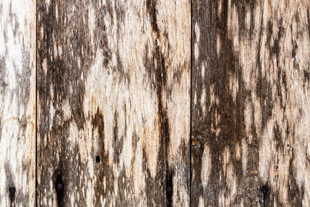 old wooden panels  photo