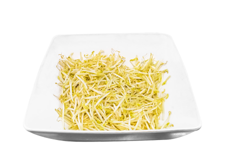 Sprouts in white dish  to creative for design and decoration isolate on background.Copy space.
