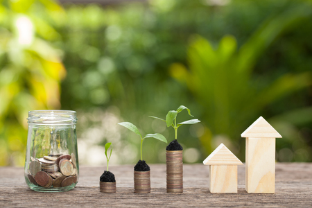 Money and plant, Saving money concept, concept of financial savings to buy a house,trees growing in a sequence of germination on piles of coins, Growth, business, money. Stock Photo