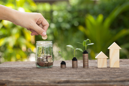 Money and plant with hands women putting golden coins in money jar, Saving money concept, concept of financial savings to buy a house,trees growing in a sequence of germination on piles of coins, Growth, business, money. Stock Photo