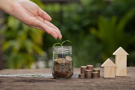 お金と、木に水をまくの手で植物、家を購入する金融貯蓄金コンセプト、保存木コイン、成長、ビジネス、お金の山に発芽の順序で成長しています
