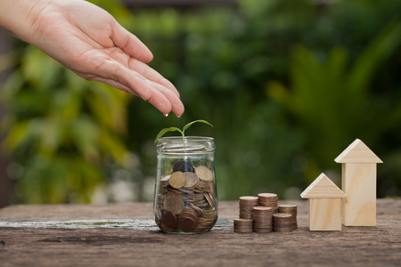Money and plant with hand watering a tree, Saving money concept, concept of financial savings to buy a house,trees growing in a sequence of germination on piles of coins, Growth, business, money. Stockfoto