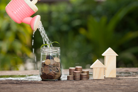 Money and plant with watering can and money tree, Saving money concept, concept of financial savings to buy a house,trees growing in a sequence of germination on piles of coins, Growth, business, money.