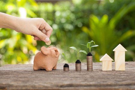 Money and plant with hand's women putting golden coins in piggy bank, Saving money concept, concept of financial savings to buy a house,trees growing in a sequence of germination on piles of coins, Growth, business, money. Stok Fotoğraf