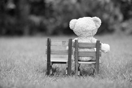 Close up lovely teddy bear sit on wooden chair, Concept about loneliness or waiting for someone, Natural background,  black and white