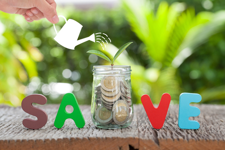 Money and plant with woman hand  hold watering can and tree, Saving money for investment concept money in jar and plant, business  growth