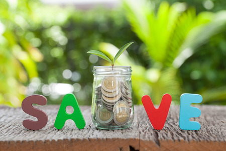 save money for investment concept money in jar and plant, business  growth Stock Photo