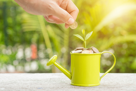 Money and sprout growing on watering in saving money concept. Stockfoto